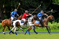 New Forest Polo Club 2017