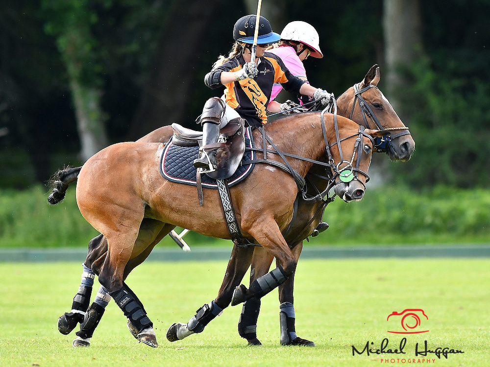 Acuma Pink v Coombe Place in the final at the New Forest Polo Club 5th August 2017. Photo: Michael Huggan