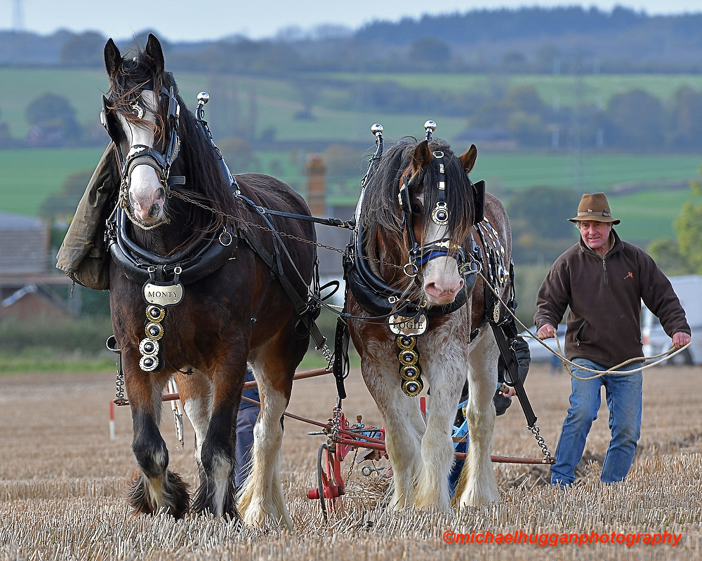 45th All England Heavy Horse Ploughing Championship