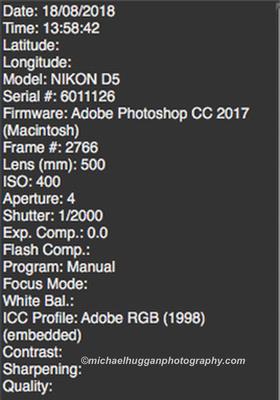 Screen Shot 2018-09-08 at 17.07.55 copyA