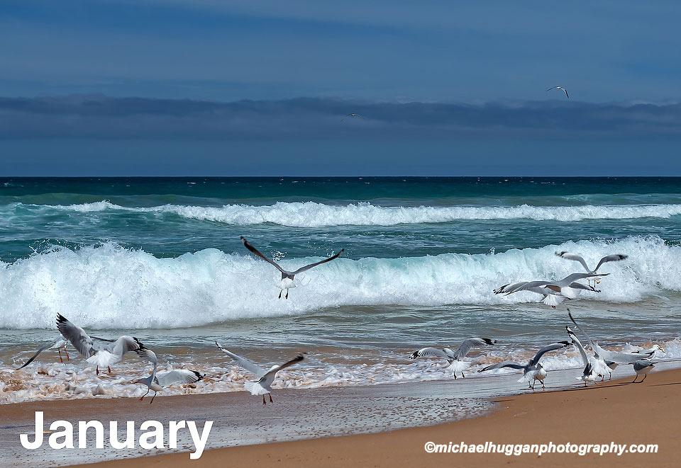 Waiting Beach - South Australia