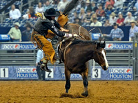bareback-riding-rodeo-houston-800