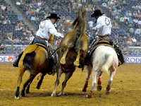 saddle-bronc-riding-rodeo-houston-1309