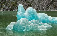 Iceberg in Endecott Arm